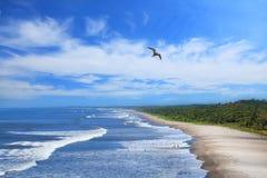 Пляж Montelimar Стоковые Фото