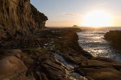 Пляж Muriwai стоковые изображения rf