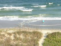 Пляж Myrtle Стоковая Фотография RF