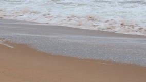 пляж newport сток-видео