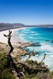 Пляж Noordhoek, Кейптаун Стоковое Изображение
