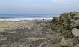 Пляж Odayam стоковая фотография rf
