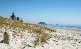 Пляж Papamoa Стоковое Изображение RF