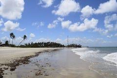 Пляж Paracuru, БРАЗИЛИЯ Стоковые Изображения