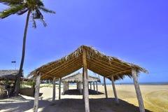 Пляж Peba Бразилии Стоковое Изображение RF