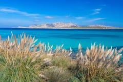 Пляж Pelosa, Сардиния, Италия Стоковое фото RF