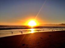 Пляж Pismo Стоковые Фотографии RF