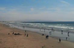 Пляж Pismo Стоковое Изображение RF