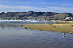 Пляж Pismo Стоковые Фото