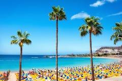 Пляж Playa de Amadores gran canaria Испания Стоковые Изображения