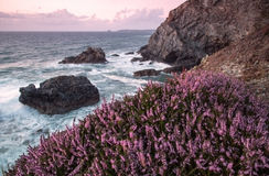 Пляж porth Trevellas в Корнуолле Великобритании Англии Стоковые Изображения