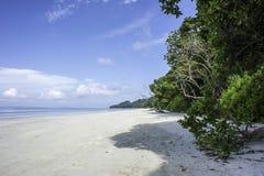 Пляж Radhanagar Стоковые Изображения RF