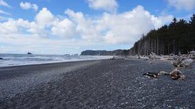 Пляж Rialto, штат Вашингтон, США Стоковое фото RF