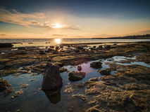Пляж Rockpool пункта Ricketts Стоковые Фото