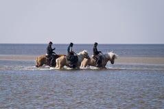 Пляж St. Питера-Ording Стоковые Фото