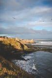 Пляж St Andrew Стоковые Изображения RF