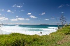 Пляж Te Arai стоковые изображения