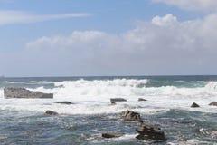 Пляж Terrigal Стоковые Изображения