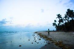 Пляж Toco Стоковые Изображения RF