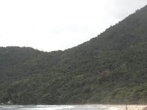 Пляж Trindade - Paraty Стоковое Фото