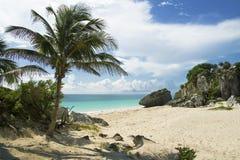 Пляж Tulum, Мексика Стоковые Изображения RF