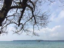 пляж ujungkulon Стоковое Изображение RF