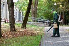 работать листьев landscaper газа воздуходувки Стоковые Изображения