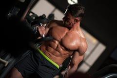 Работать мышечного фитнеса модельный с гантелями Стоковая Фотография