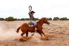 Работая ковбой Стоковая Фотография RF