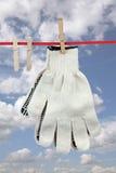 2 работая перчатки Стоковое Фото