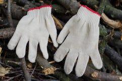 Работая перчатки на древесинах Стоковая Фотография