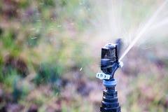 Работая трава спринклера моча Стоковые Фотографии RF