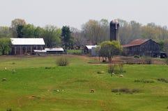 Работая ферма Стоковое Изображение