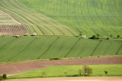 работа весны поля Стоковые Изображения
