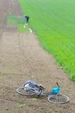 Работа в поле Стоковая Фотография RF