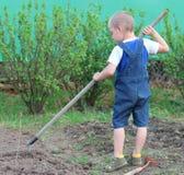 Работа в саде Стоковое Фото