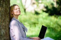Работа девушки с ноутбуком в парке сидеть на траве Офис окружающей среды Преимущества outdoors работы Женщина с работой ноутбука стоковое фото rf