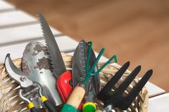 работа лета оборудования садовничая напольная Стоковые Изображения