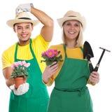 Работа занятия садовых инструментов садовничать цветка команды gardner садовника изолированная на белизне стоковые фото