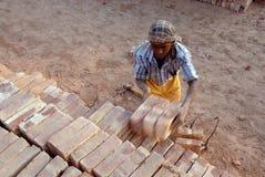 работа Индии поля кирпича Стоковое Изображение