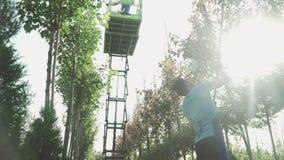 Работа людей в саде используя лифт сток-видео