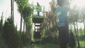 Работа людей в саде используя лифт акции видеоматериалы