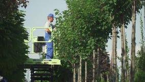 Работа людей в саде используя лифт видеоматериал