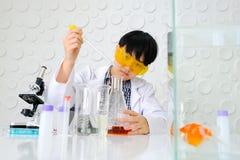 работа научных работников лаборатории Молодой женский исследователь Стоковое Изображение RF