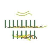 Работа на плетеной корзине корзина вербы, отростчатый Basketry вектор бесплатная иллюстрация
