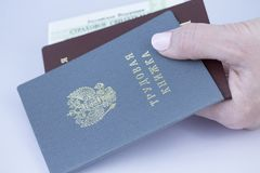 Работа, пасспорт, и номер страхового полиса в крупном плане руки Стоковое Фото