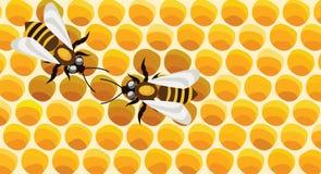 работа пчел Стоковая Фотография RF