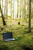 Работа/работа расстояния Офис с компьтер-книжкой и чашкой кофе Стоковая Фотография