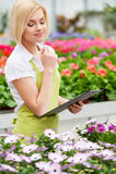 Работа с цветками. стоковые фотографии rf