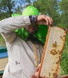 Работа beekeeper снаружи Стоковая Фотография RF